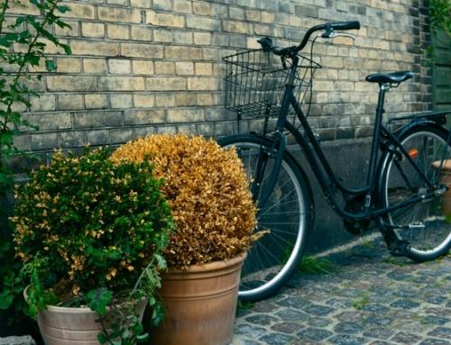Havekrukken KIJE Gray – ideel til udendørs og indendørs brug